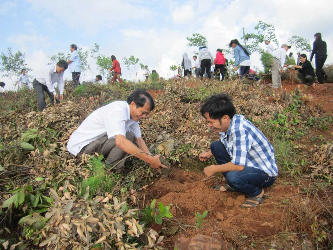 Two participants are planting pine in the bare hill